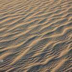 """Ripples,"" Mesquite Flats Dunes"