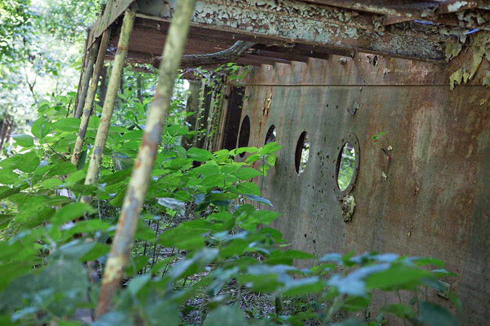 Portholes on abandoned ship in the forest