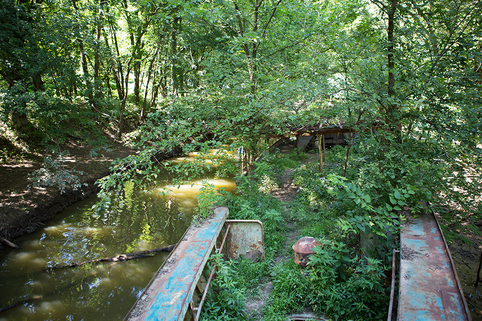 View from the front of the abandoned river ship in the forest