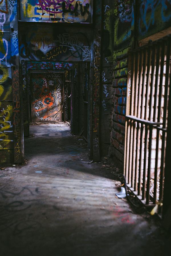 Abandoned Animal Cage