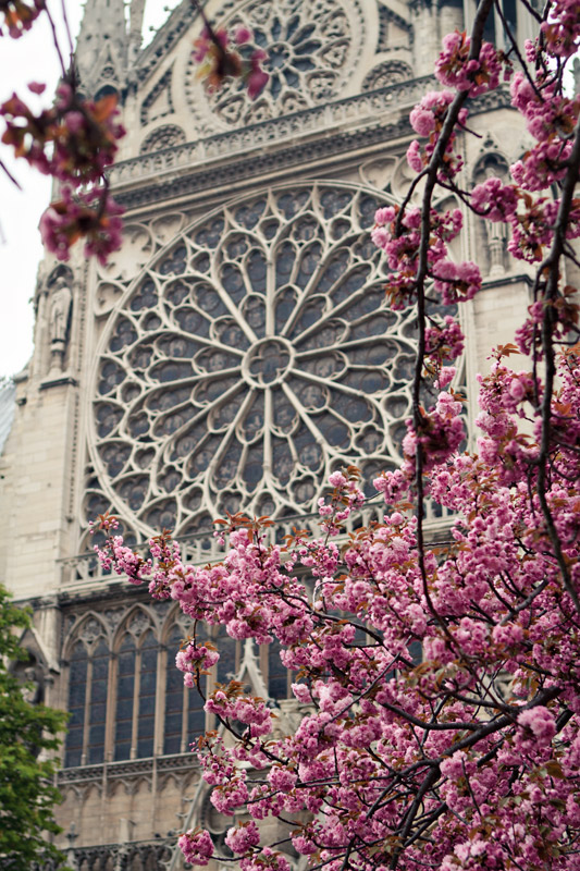 Exterior detail of the main window at Notre Dame Cathedral