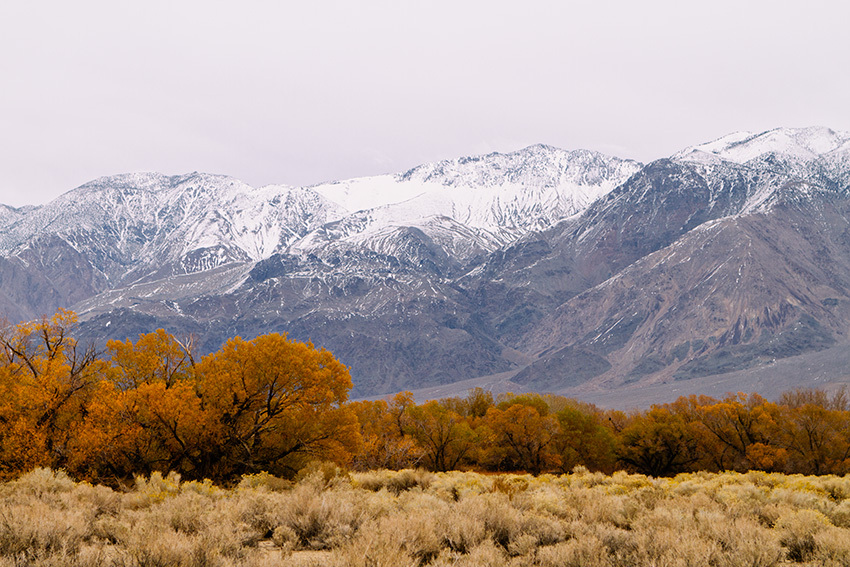 Jake Reinig Travel Photography Lone Pine
