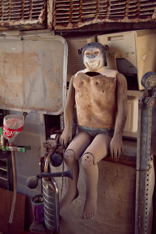 Chimpanzee boy,, East Jesus, Salton Sea