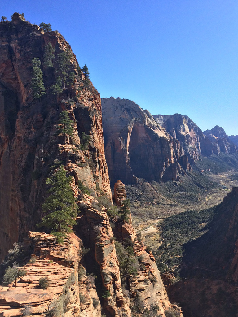 The final steep, narrow spine to get to the top of Angels Landing.