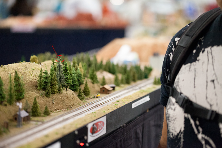 Anaheim Convention Center Model Train Expo-Scale Shot of Person Next to Mini Eagle